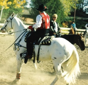 Dressage Queen in a Parade Saddle
