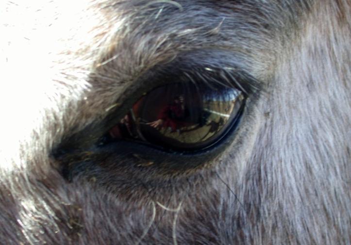 in her eye