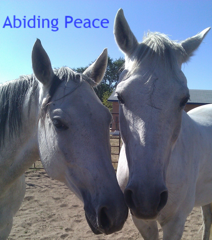 Abiding Peace