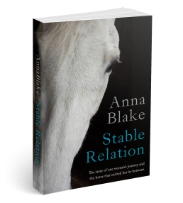 Stable Relation 3D Cover