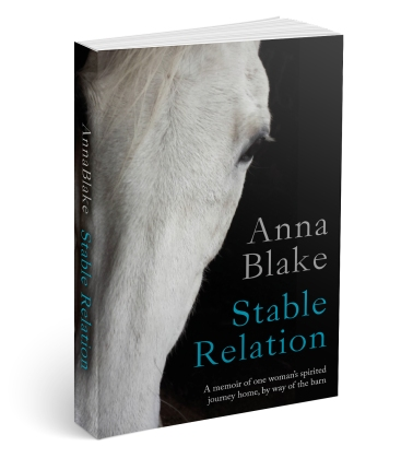 Stable_Relation_3D_Cover[1]
