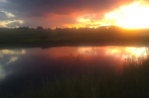 Infinity Pond