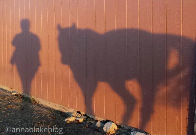 WM shadow lead